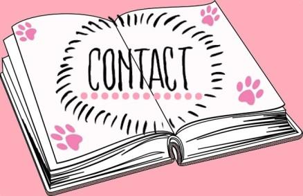 contact-blog